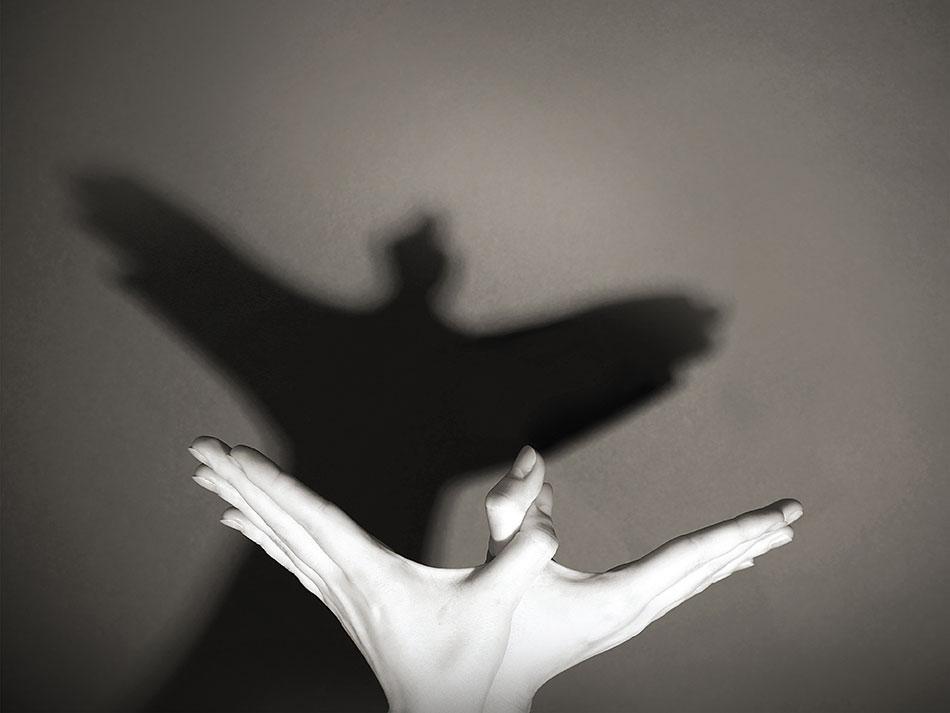 De Vleugels